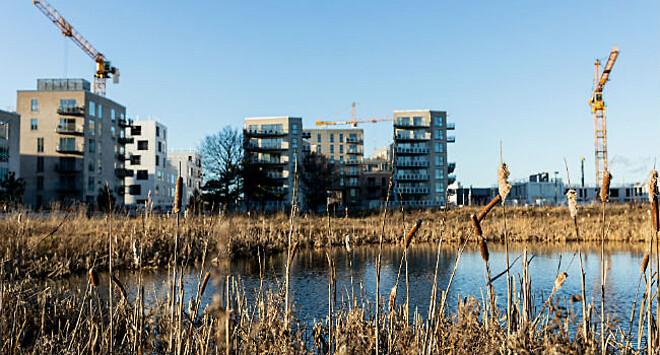 SBi fusionerer med Institut for Byggeri og Anlæg og bliver til Build