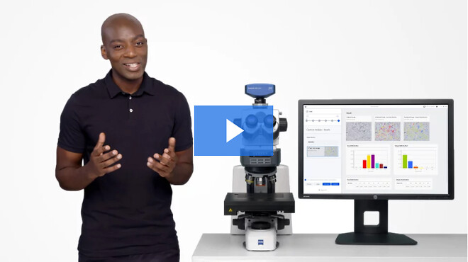 #ZEISS #ZENcore #imaging #analysis #connectivity