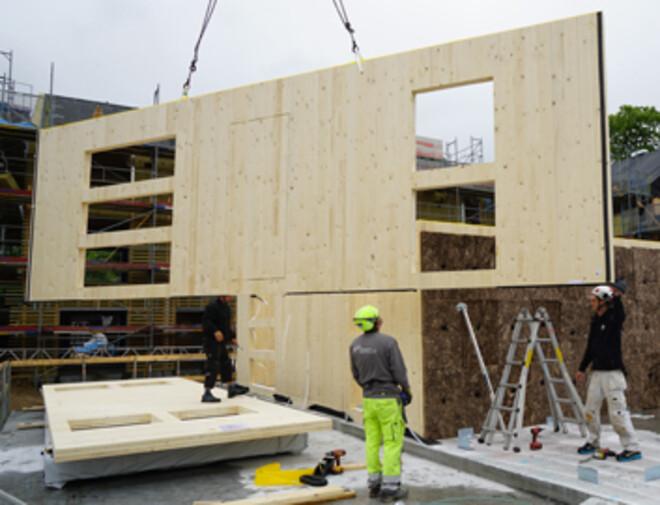 CLT, træbyggeri, krydslamineret, etagebyggeri