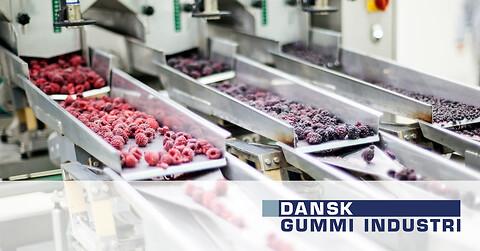 Gummi og polyurethan løsninger til fødevarerindustrien - Gummi og polyurethan til fødevarer Dansk Gummi Industri