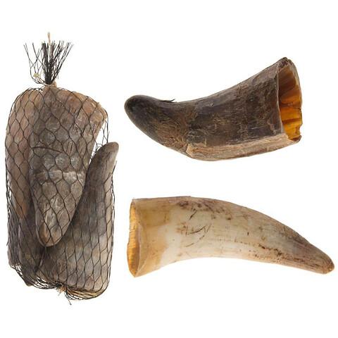 Ko horn i net, 5 stk, 11-14cm, ægte horn