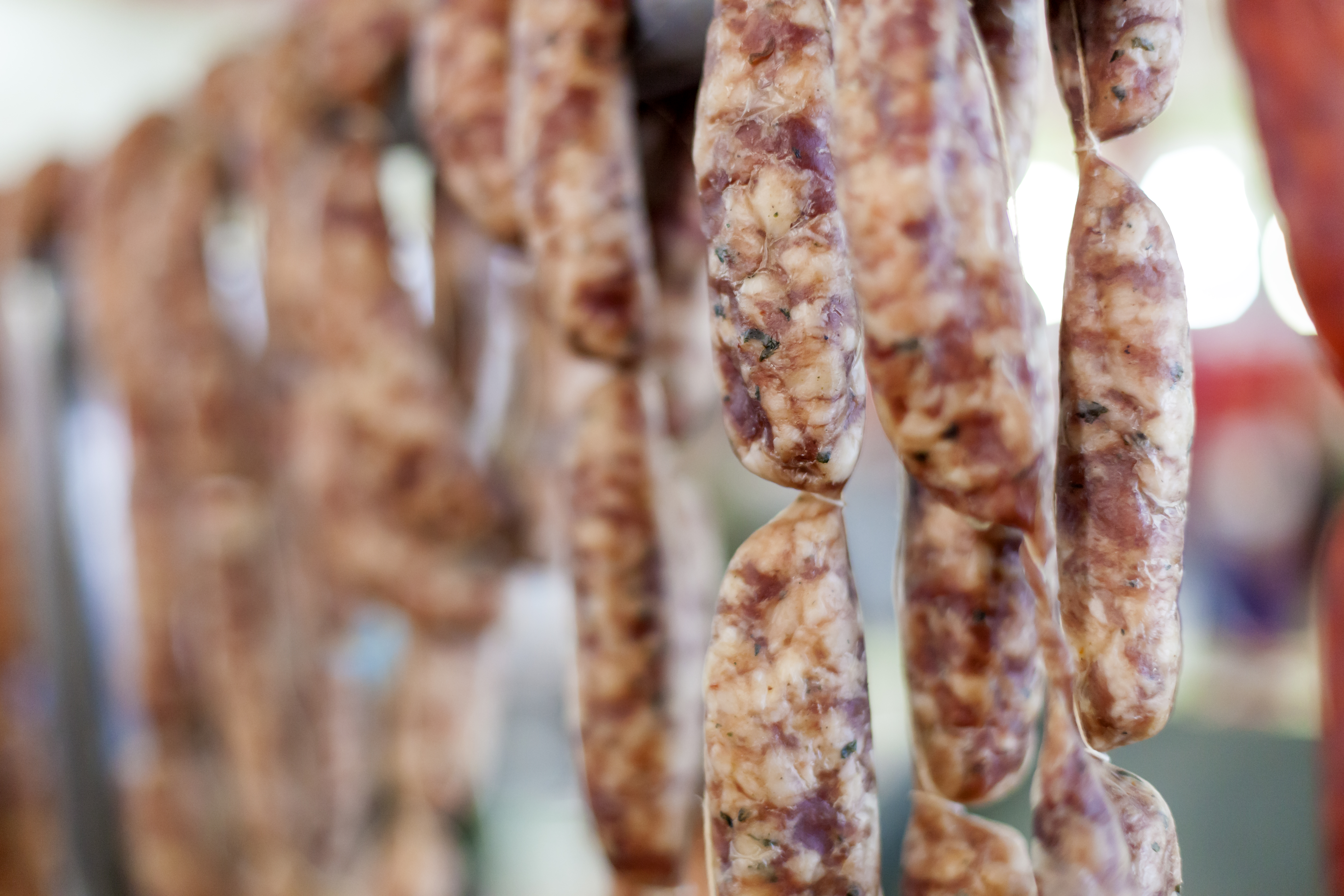 Salmonellautbrott i kalmar lan