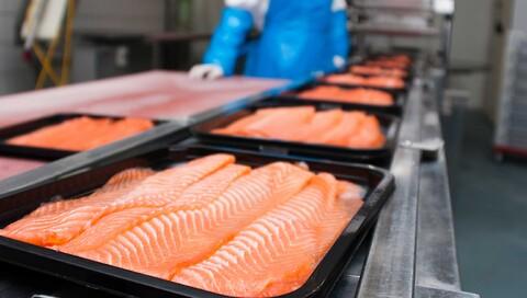 Komplette løsninger til fiskeproducenter over hele verden