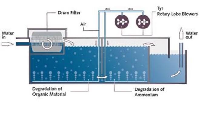 Schematisk representation av den biologiska vattenreningen i ett cirkulationssystem