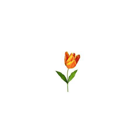 Tulipan på stilk xxl, 130cm orange