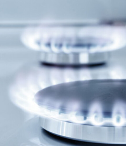 Fordele ved European Gas Spot Indeks