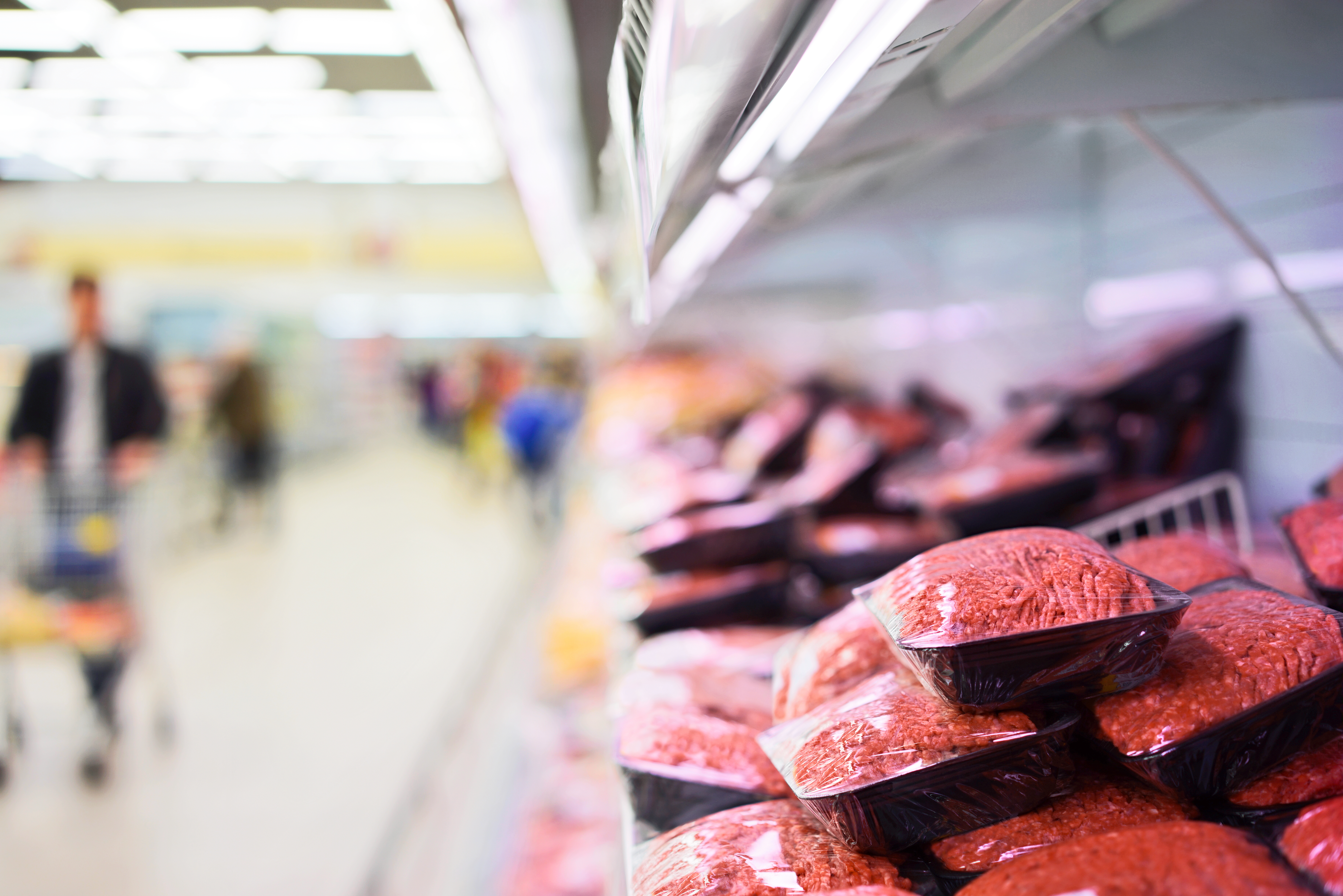Salmonella i kottfars pa svenska restauranger
