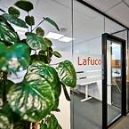 Lafuco. Glasvægge