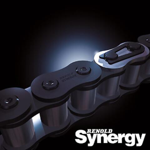 Renold Synergy - Transmissionskæde - Renold Synergy - Transmissionskæde