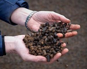 Black pellets - Ideel grøn tilsats til fastbrændsel
