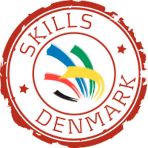 skills-logo2