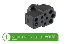 Wieland Electrics RST Mini Mola-stik overflødiggør armaturklemmer!