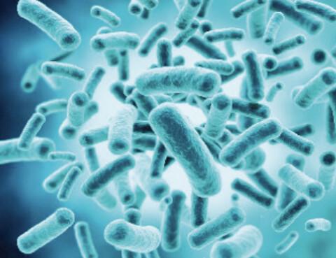 Listeria i produktionen? Minska er risk med upp till 99,99% - Listeria i produktionen - minska risk med upp till 99,99%