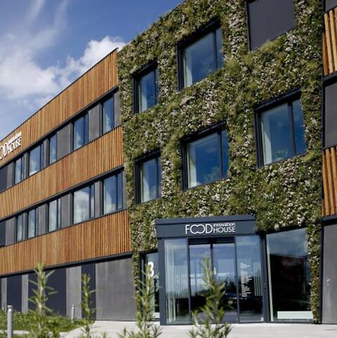 Udendørs plantevægge fra Nature Impact