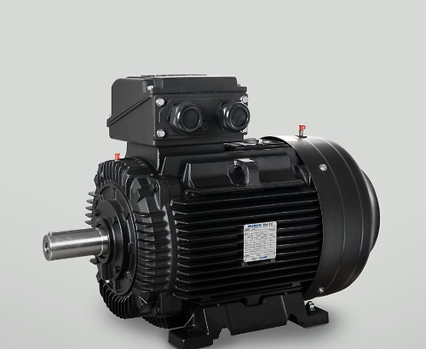 3-fasede standardmotorer