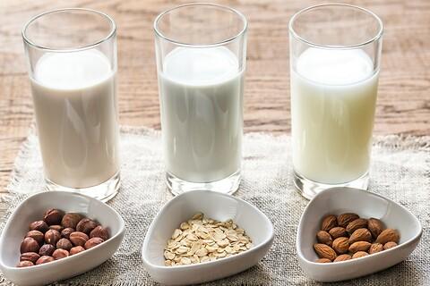 Plantebaserede produkter på mejerierne - muligheder og begrænsninger