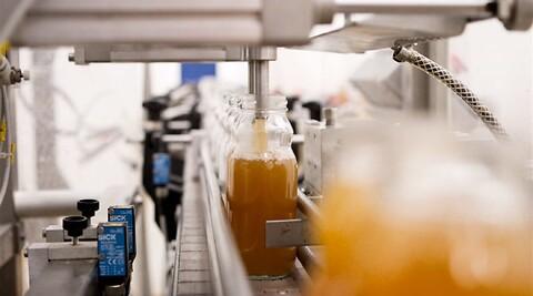 Smagen af fermentering