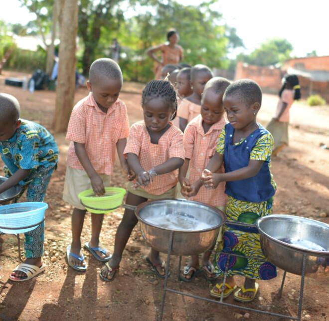 Rigtige afrikanske haner