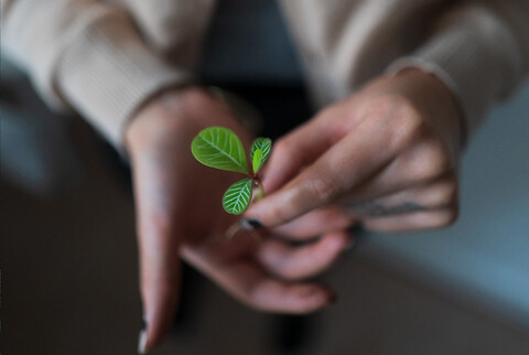 "Areco Contractors miljöavdelning blomstrar – ""hjälper konkurrenter"" - Areco Contractor Miljöavdelning"