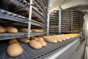 Klüberfood NH1 CH 2 Plus: Højeffektive kædeolier til fødevareindustrien