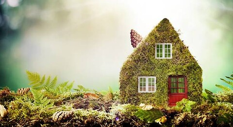 Nye vinduer er bæredygtige - DVV-mærkede vinduer er bæredygtige