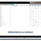 SE - Søgefunktion a la google