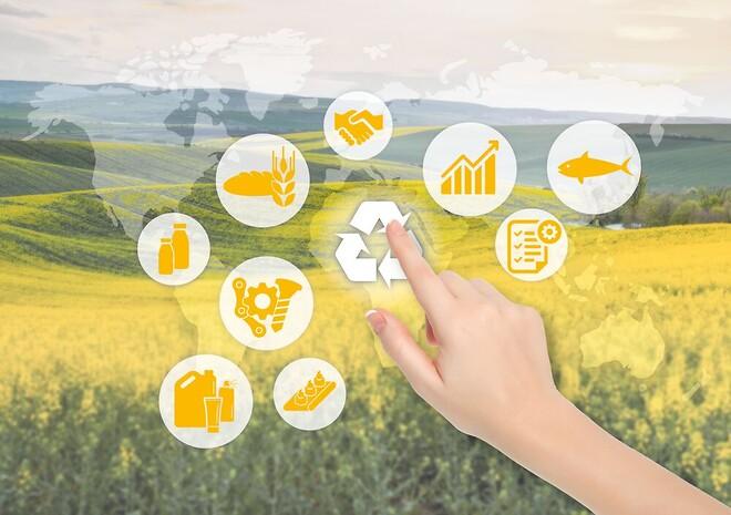 Klüber Lubrication rapport bærekraft og matsikkerhet
