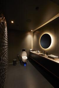AXOR Starck Organic i børstet sort krom på badeværelset hos Alchemist