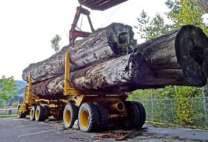 Skogsmaskin med virke, lås på luckor invändingt och utvändigt från Aero Materiel