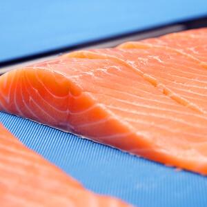 Salmon Sliced_close-up