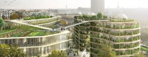 Urban gardening og taghaver