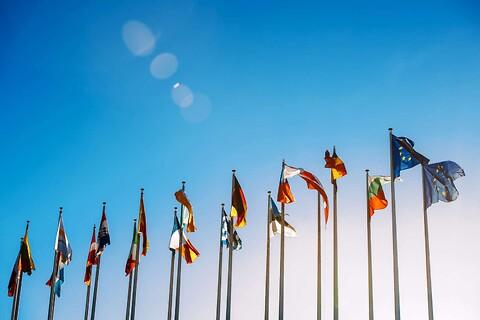 Internationale ansættelser – online