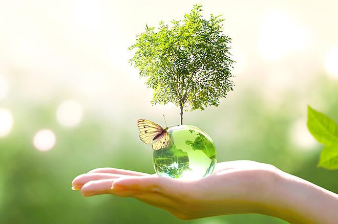 Klimanøytral Green Origin-gass gjør at Air Liquides kunder kan investere i et bærekraftig miljø og forbedre sitt eget grønne image.