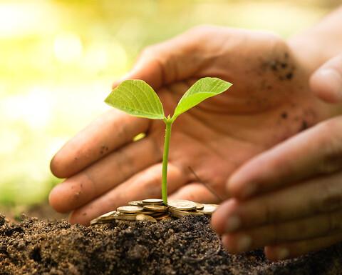Miljøkoordinator - Hos Kiwa kan du utdanne deg som Miljøkoordinator, sertifisert Miljøleder/Environmental Manager (EM) eller sertifisert Environmental Systems Manager (CESM). Et forsterket miljøfokus gir vil bedriften din effektive miljøtiltak, konkurransefortrinn i anbudsrunder, økt lønnsomhet og et bedre omdømme internt og eksternt.