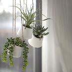 Kunstige hængeplanter i hvide potter