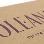 miljövänliga bärpåsar och presentaskar | Scanlux Packaging