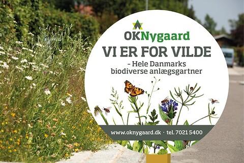 Biodiversitet - OKNygaard - Biodiversitet