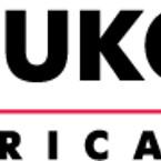 Asset 3@2x lukoil lubricants black transparent logo