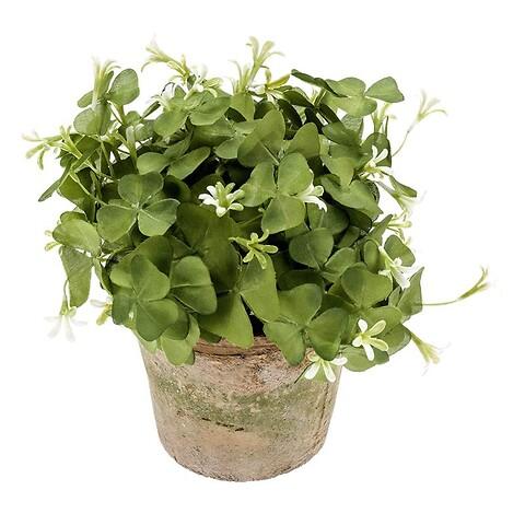 Lykkekløver oxalis i krukke, grøn, 18cm, kunstig plante