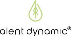 Alent Dynamic AB