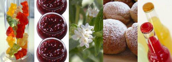 Nye sødemidler i danske fødevarer - Food Supply DK