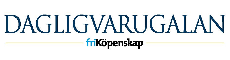 DVG_logo_blue