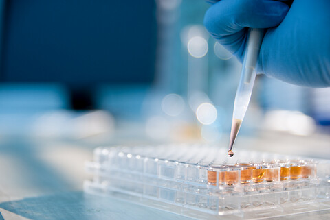 Kemiske analyser - Fødevarer