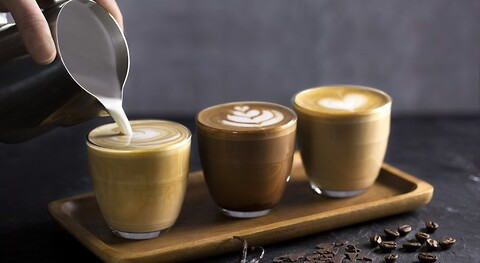 Esquires-The Organic Coffee Co. - Master Franchise: