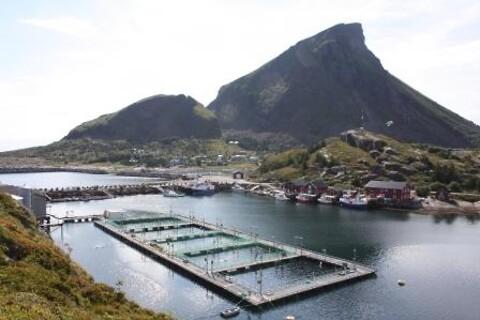 Varmforsinking av stål i konstruksjoner til havs tilbys av NOT Varmforzinking AS