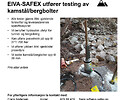 EIVA-SAFEX AS