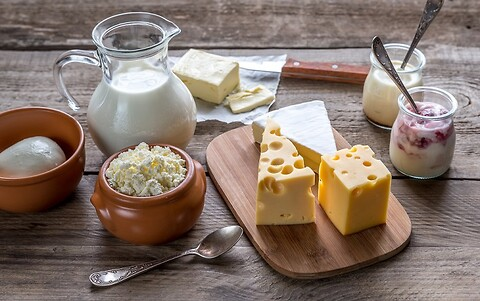 Fermentation and fermented dairy products