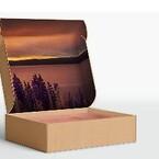 Forsendelseskasser med design og tryk | Scanlux Packaging | scanlux-packaging.com