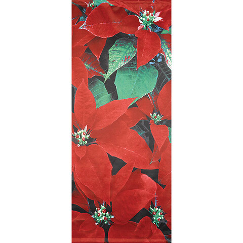 Banner, julestjerne