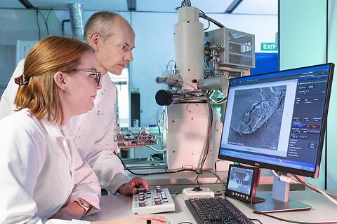 SEM-EDS - Scanning Electron Microscope